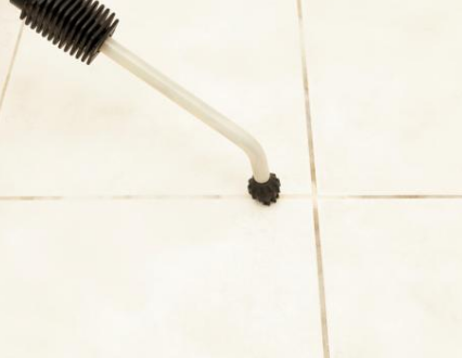tile and the grout cleaner